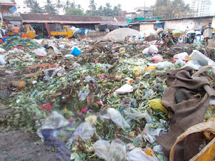 Biggest Garbage dump in Kochi ?