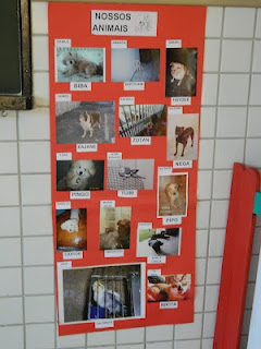 Mural de fotos de cães e gatos de alunos do ensino fundamental