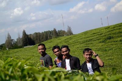 kebun teh bah butong sidamanik pematangsiantar