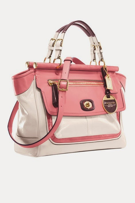 Top 5 Gorgeous Bags and Purse for women