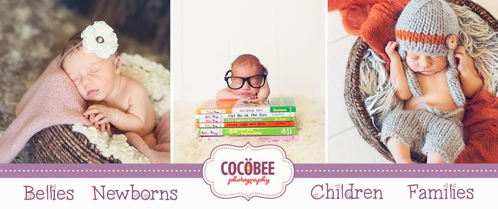 Cocobee Photography  |  Salt Lake City Newborn Photographer