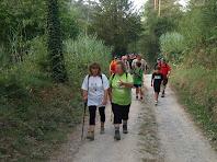 El Camí del Vilardell segueix el fons de la vall del Torrent del Bosc