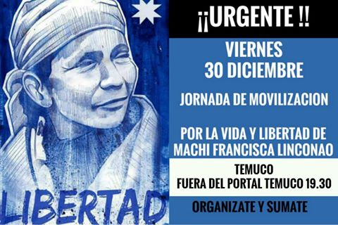 TEMUCO: JORNADA DE MOVILIZACIÓN POR LA VIDA Y LIBERTAD DE LA MACHI FRANCISCA LINCONAO