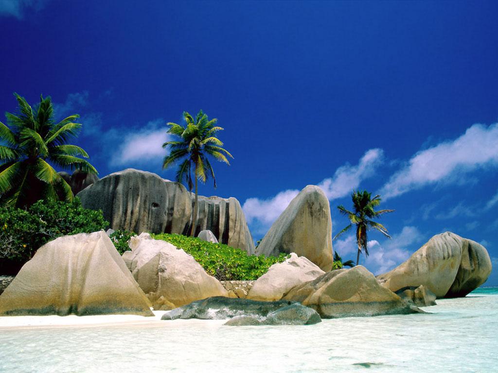 http://2.bp.blogspot.com/-zKPDlJCIYAQ/TVvVQ0b1RgI/AAAAAAAANak/poEP2K_ylbs/s1600/plage_tropicale_37112.jpg