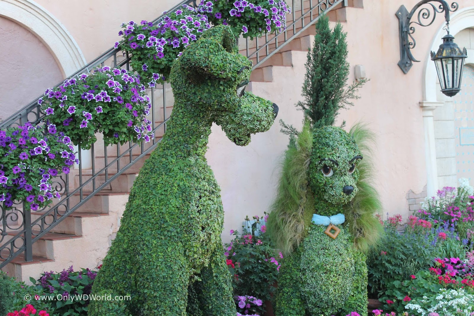 Epcot International Flower Garden Festival Dates For 2016 Disney World Blog Discussing Parks