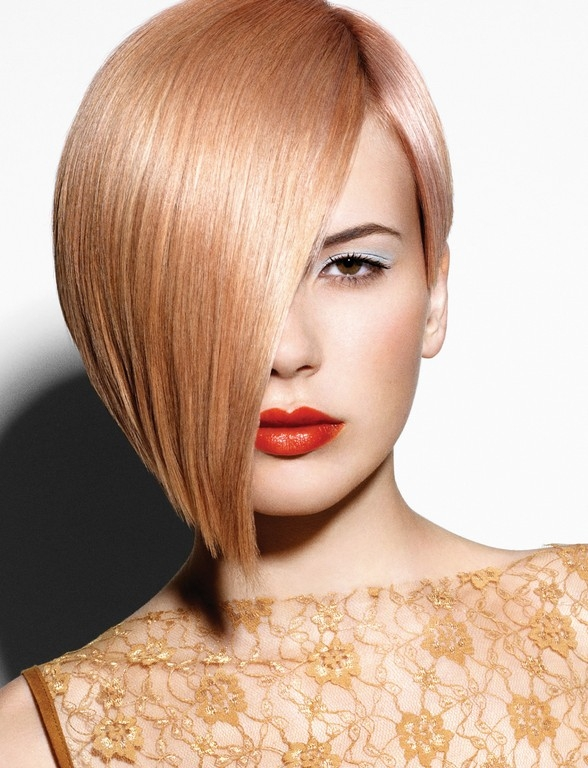 Pleasant A New Life Hartz Bob Hairstyles 2013 Hairstyle Inspiration Daily Dogsangcom