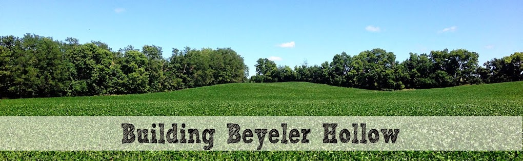 Building Beyeler Hollow