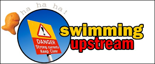 Still Swimming Upstream Blog