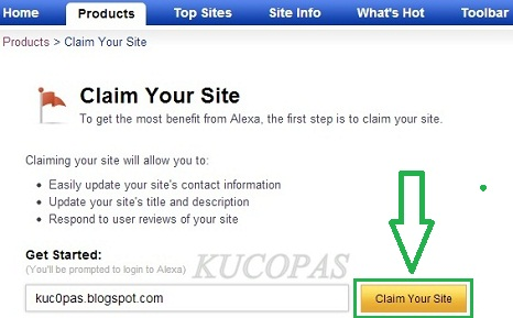 Cara Mengatasi Alexa Rank No Data Di Blog