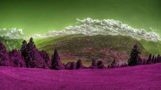 Cara Merubah warna foto dengan color balance dan hue/saturation