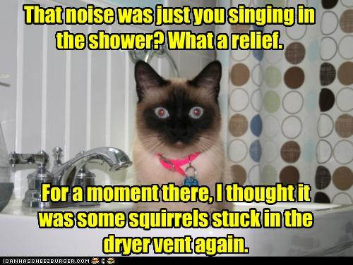 funny-pictures-that-noise-was-just-you-s