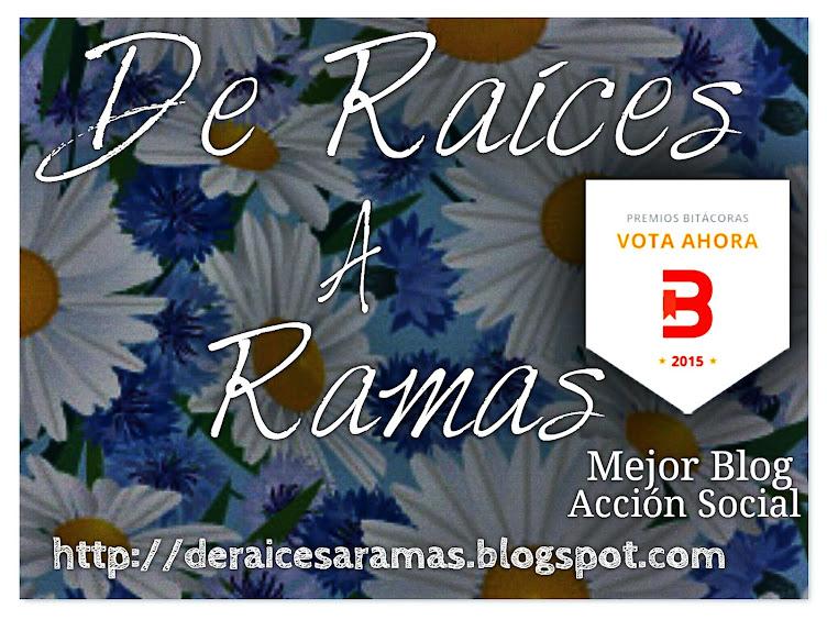HEMOS CONSEGUIDO EL LUGAR 24 DE LOS PREMIOS BITÁCORAS