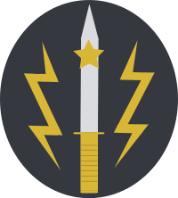 Insignia Of Special Services Group Pakistan Army