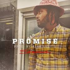 Skeme - Promise