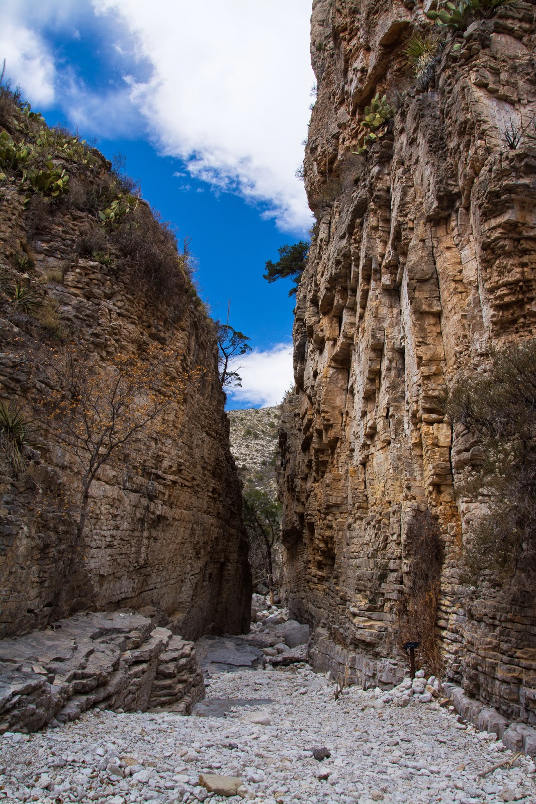Devil's Hall, Guadalupe Mountains National Park