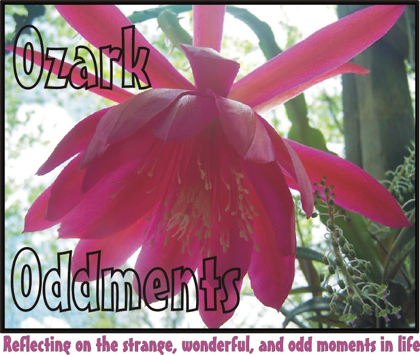 Ozark Oddments