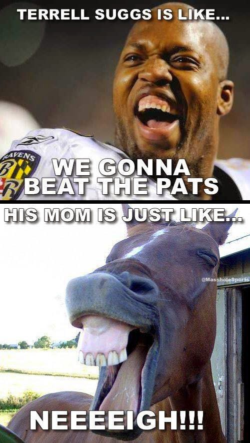 terrel suggs is like... we gonna beat the pats. His mom is just like...  neeigh!!!