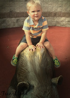 little boy riding a bronze bear at the zoo