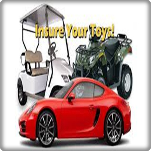 Insure Your Toys