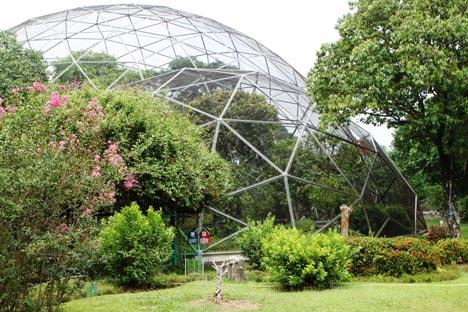 my blogz: jalan jalan ke taman burung di taman mini indonesia indah
