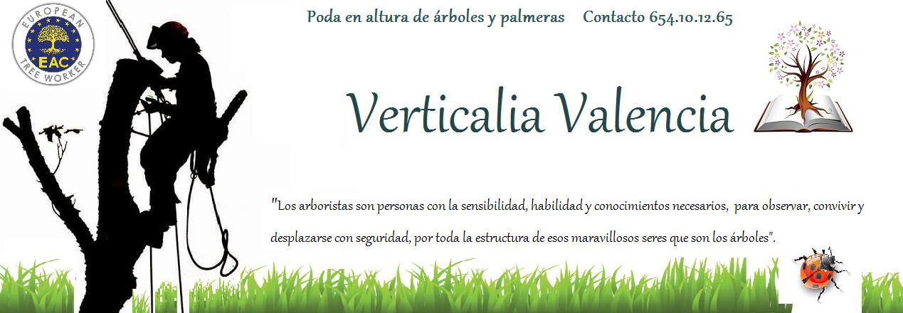 Verticalia Valencia, Poda Arboles en Altura.