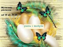 pióra i motyle