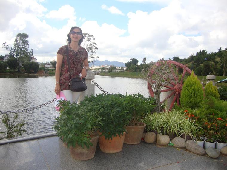Vườn hoa Dalat