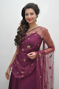Hamsa Nandini at Bengal tiger audio-thumbnail-14