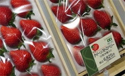 World's 10 Most Expensive Fruits