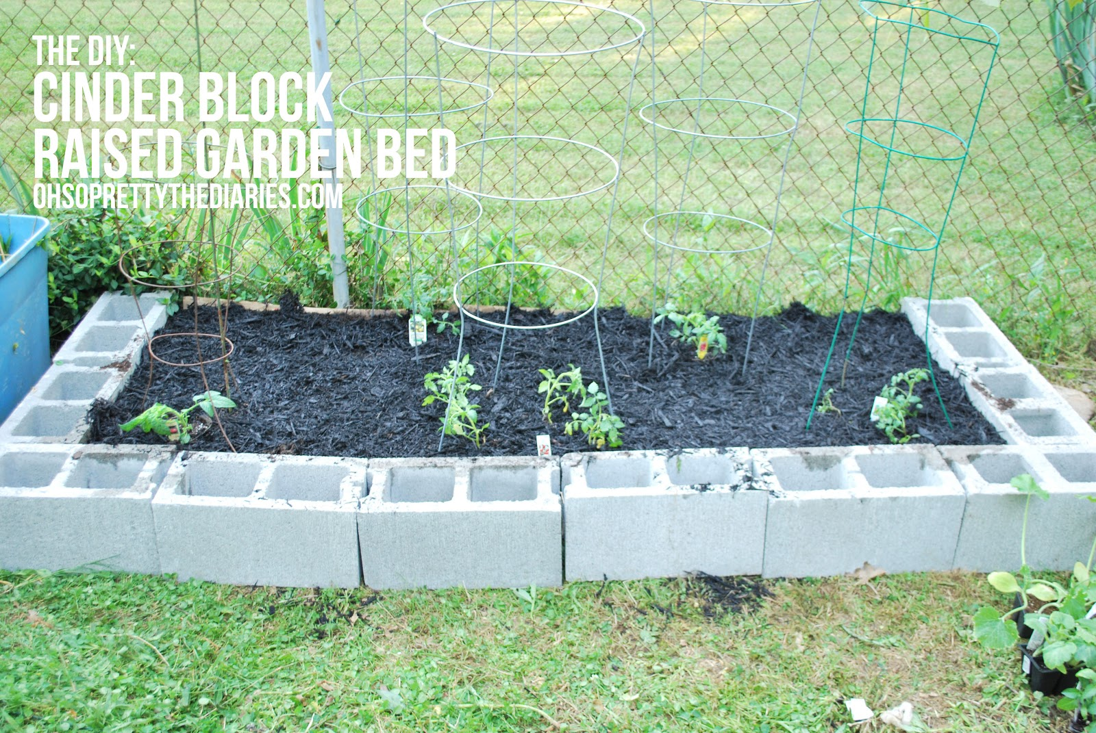 The Diy Cinder Block Raised Garden Bed Hey Wanderer