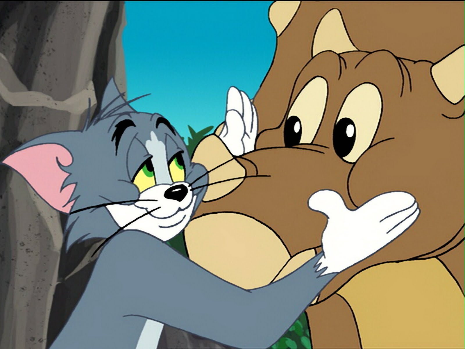 tom and jerry the video