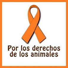 Derechos de los animales
