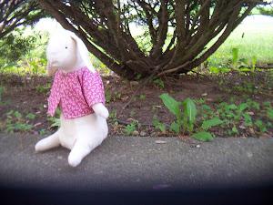 Mr. Rabbit, a Gail Wilson Design