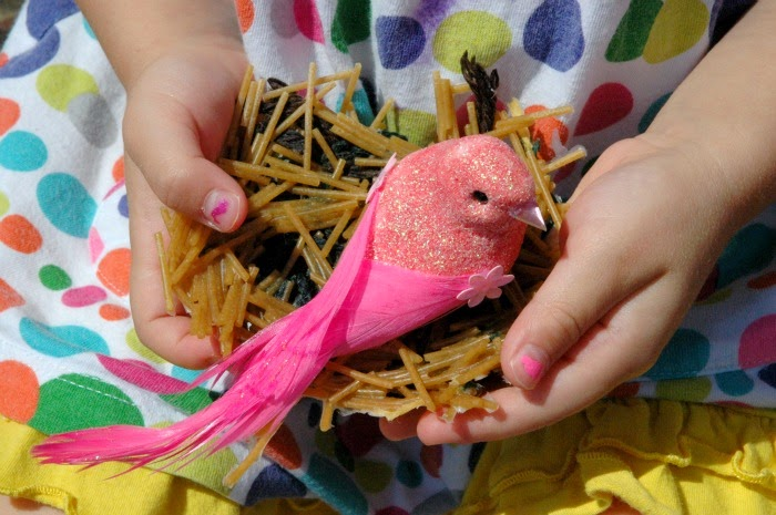 Dried pasta bird 39 s nest craft what can we do with paper for Baby bird nest craft