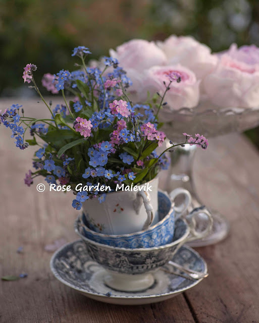 Tea cups and forget me nots