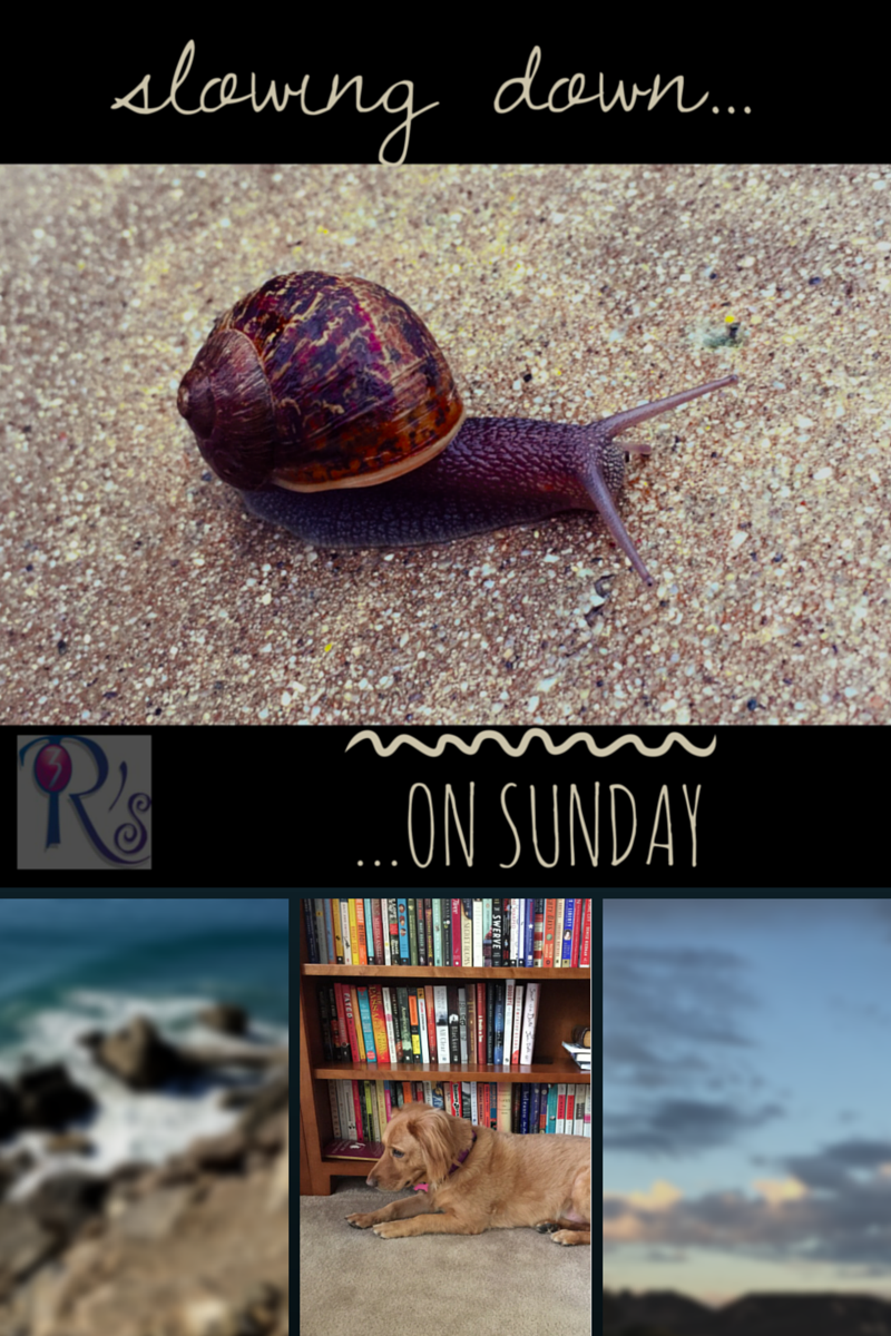The Sunday Slowdown on The 3 Rs Blog: recapping the week past and looking at the week ahead
