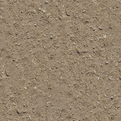 Seamless Sand Dirt Ground Texture