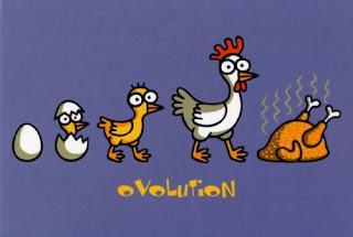 LA EVOLUCIÓN DE UN MIR