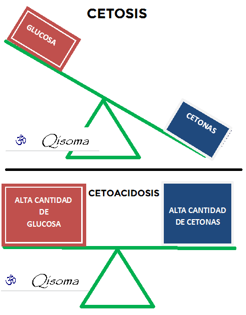 cetosis-y-cetoacidosis
