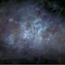 La costellazione del Cigno vista dallo spazio