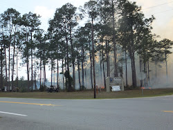 Here's a view of the burn near the front entrance