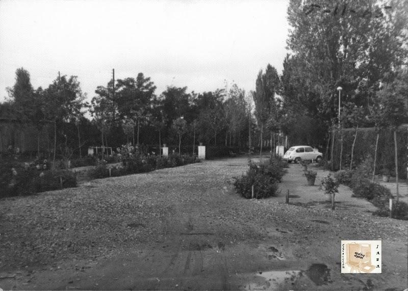 """Binefar Piscinas-Campo de futbol """"El Segalar"""" año 1965."""