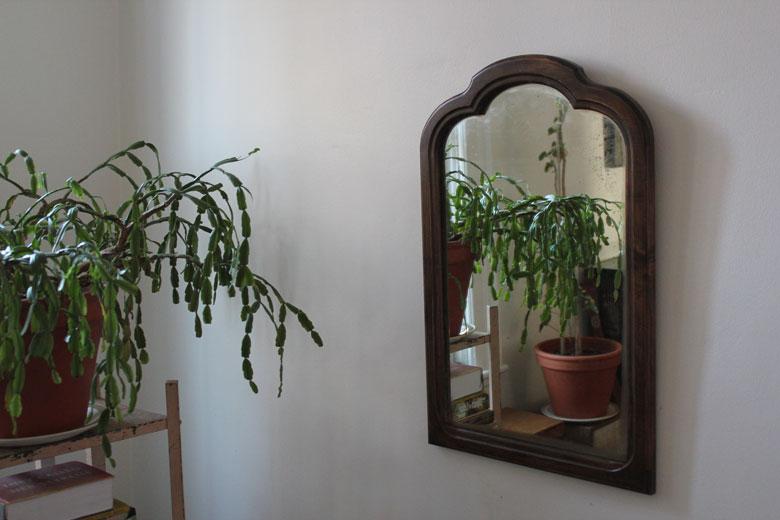 wardens lisa diquinzio michael leblanc toronto apartment interior christmas cactus reflection mirror
