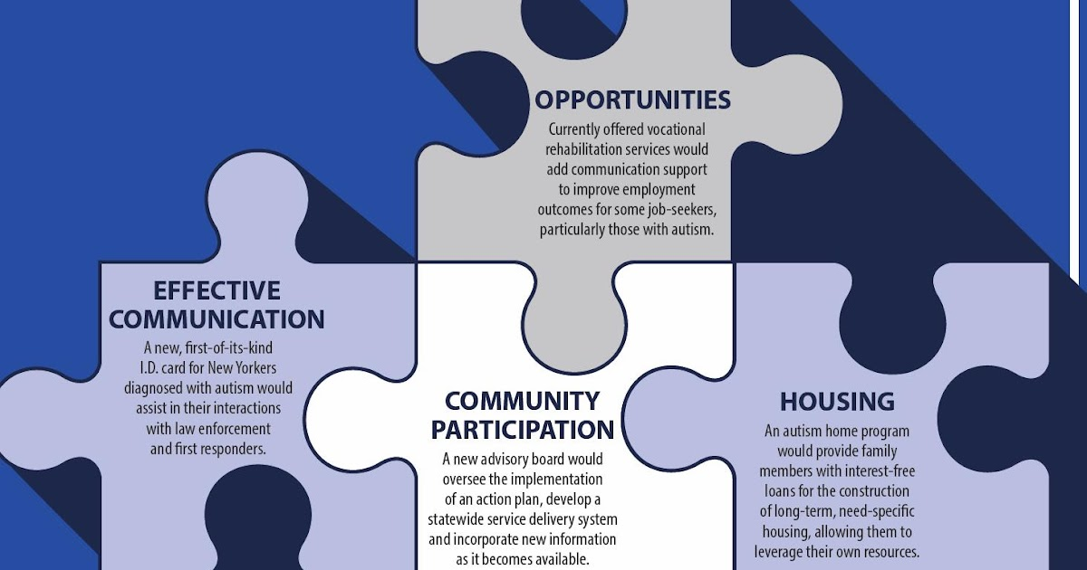 autism policy and politics  autism action plan