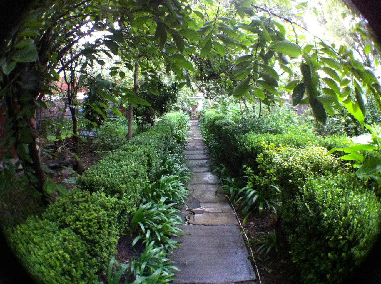 Resultado de imagen para Jardín Botánico de la Benemérita Escuela de Maestros