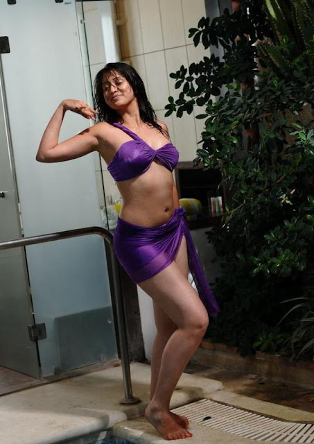 Lakshmi Rai hot in bikini still