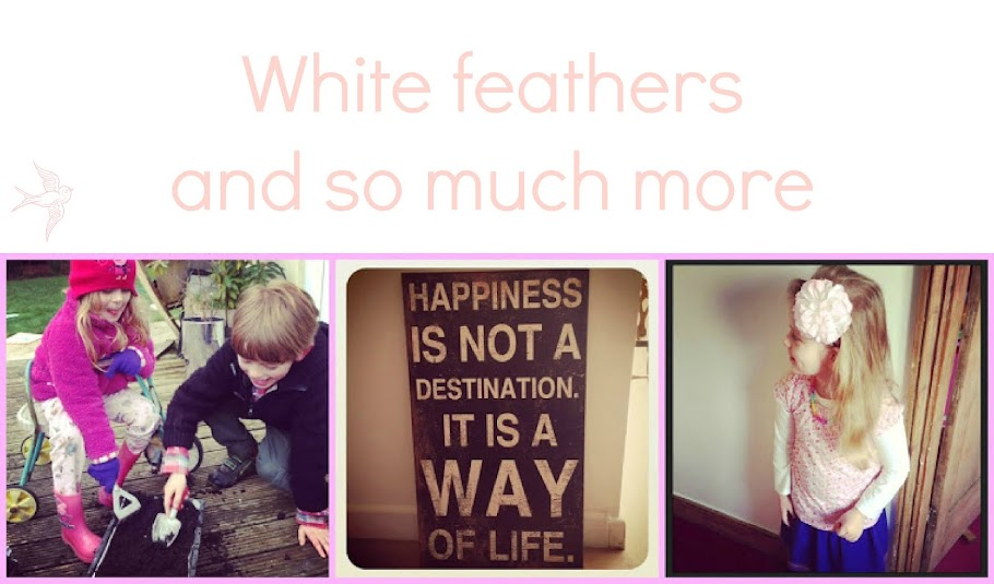 White feathers and so much more....