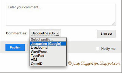 Screenshot showing the Identity Options available when allowing only 'Registered User' to comment on your blog