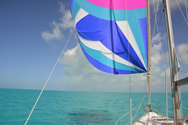 sailing spinnaker
