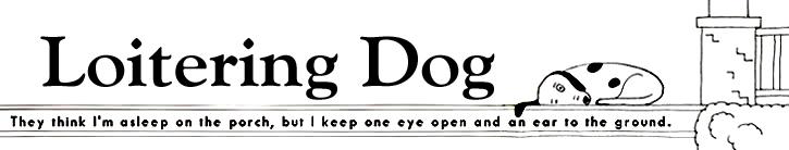 loitering dog